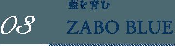 03,ZABO BLUE